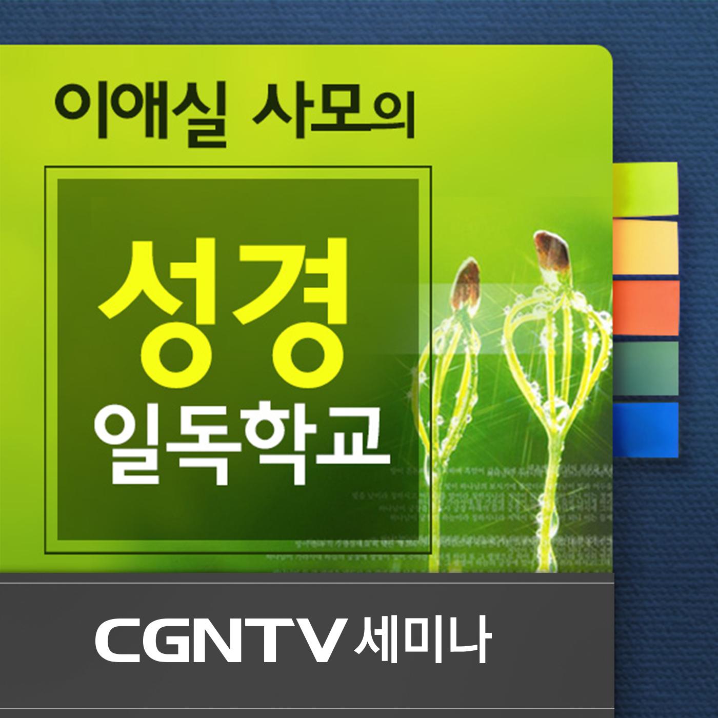 프로그램 이미지